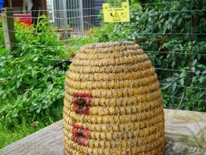 hive3